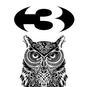 3 The Falcon