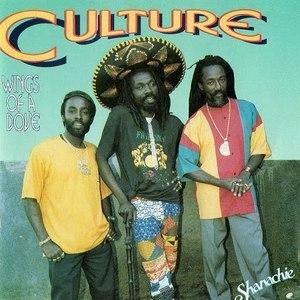 Culture Under The Bridge