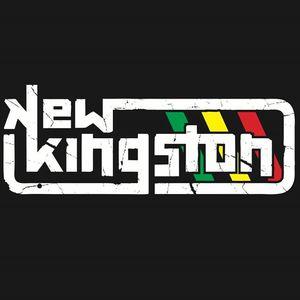New Kingston Waikiki Shell