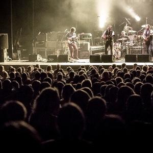 Pete Williams Musicport Festival