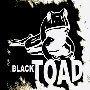 Black Toad Yellow Lion