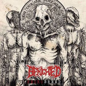 Benighted Alpl