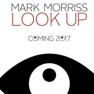 Mark Morriss Rising Sun Arts Centre