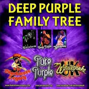 Deep Purple Family Tree The Robin