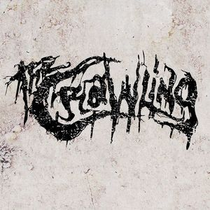 The Crawling The Warzone Collective