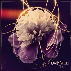 Dayshell The Dip