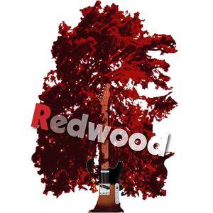 REDWOOD la band cantautorale Cross Roads Live Club