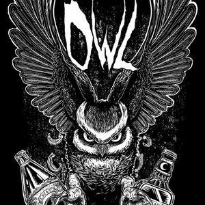 Owl Motel Campo