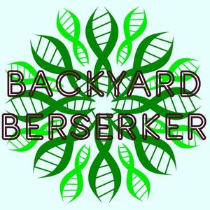 Backyard Berserker People's Stage Buena Vista