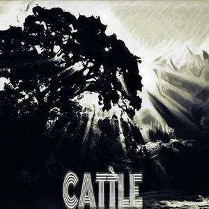 Cattle King Tuts Wah Wah Hut