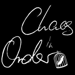 Chaos In Order Rheinwiese