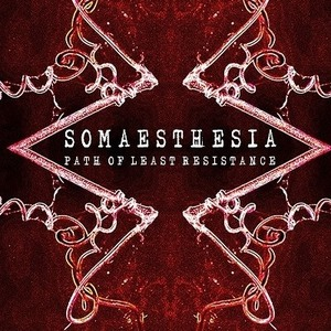 Somaesthesia The Banshee Labyrinth