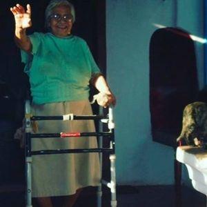 Auntie Flo Salon Zur Wilden Renate