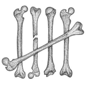 The Skeleton Club Semaphore Workers Club