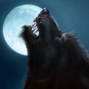 Werewolves of Morehead Emerald Isle