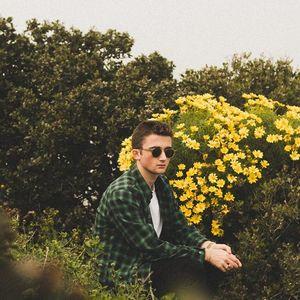 Andrew Luce Paradise