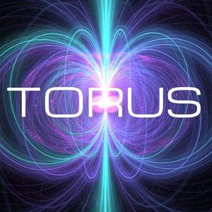Torus Band Provincetown