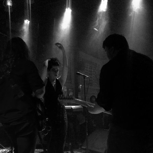Julia Felice and the Whiskey Crisis The Westy