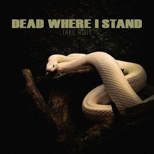 Dead Where I Stand Reggies Music Joint