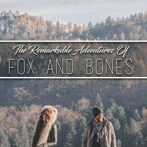 Fox and Bones Kasseturm