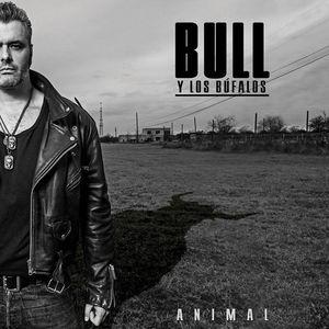 Bull y Los Búfalos Clute