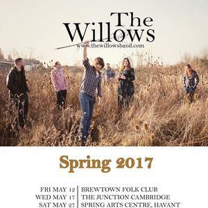 The Willows The Musician
