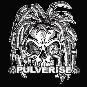 Pulverise The Black Swan