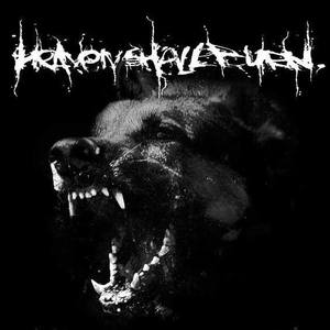 Heaven Shall Burn Bissingen
