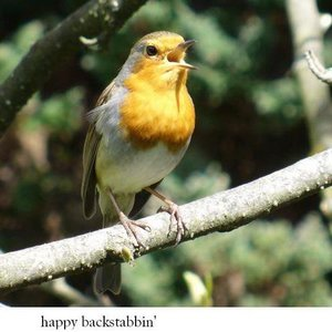 Robin and the Backstabbers Jardin Bistro