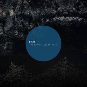 F·O·E·S Essigfabrik