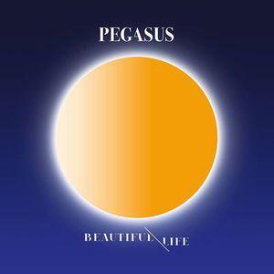 Pegasus Privatclub
