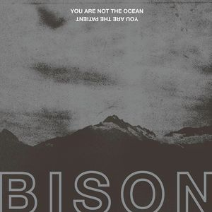 Bison The Exchange