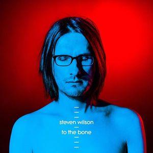 Steven Wilson THE CIRCUS