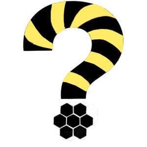 Bees? Laurel Groove