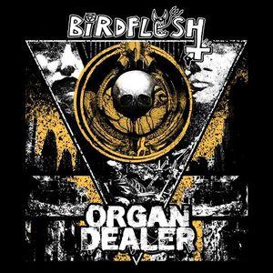 Organ Dealer Bar Matchless