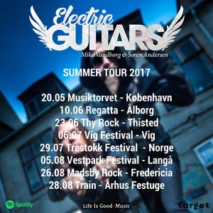 Electric Guitars Valby Hallen