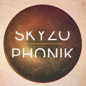 Skyzophonik Art de Rue / 61