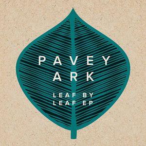 Pavey Ark Hull
