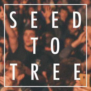 Seed to Tree ROUBAIX