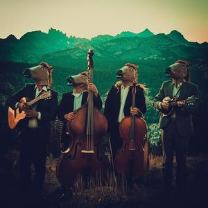 Sweetwater String Band Willits
