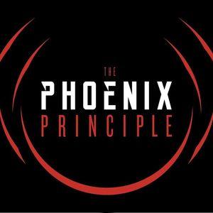 The Phoenix Principle Wired