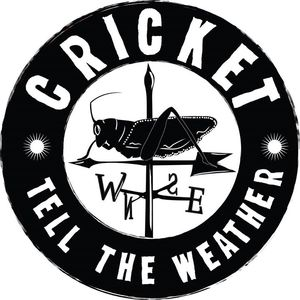 Cricket Tell the Weather Folkus Project