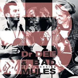 BAD MULES w/ Dr Dee - Festival Jazz en Place