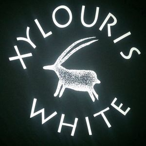 Xylouris White Melfi