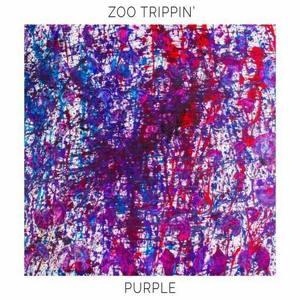 Zoo Trippin' Fashion Meets Music Festival