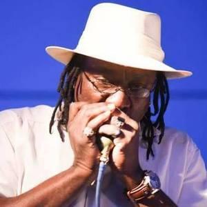 Roharpo the Bluesman Delta Blues Festival