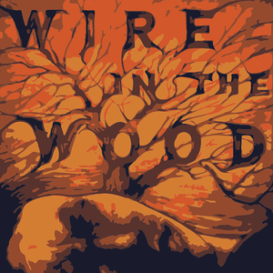 Wire in the Wood BeMo's Bar
