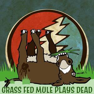 Grass Fed Mule Taste of St. Louis @ Chesterfield Ampitheater