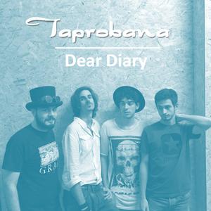 Taprobana Frascati