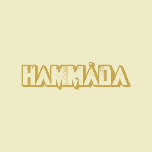 hammada Steinhaus